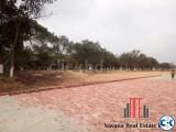 Navana Real Estate plot in Purbacha