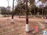 10 Katha Plot in Purbachal