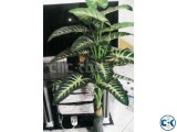 Artificial Plant Home Office Decore-