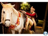 Horse Ghora Rental and Horse Carriage Rental in Dhaka