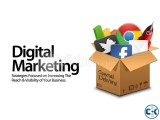 Digital Marketing Executive SEO SEM EMM SMM
