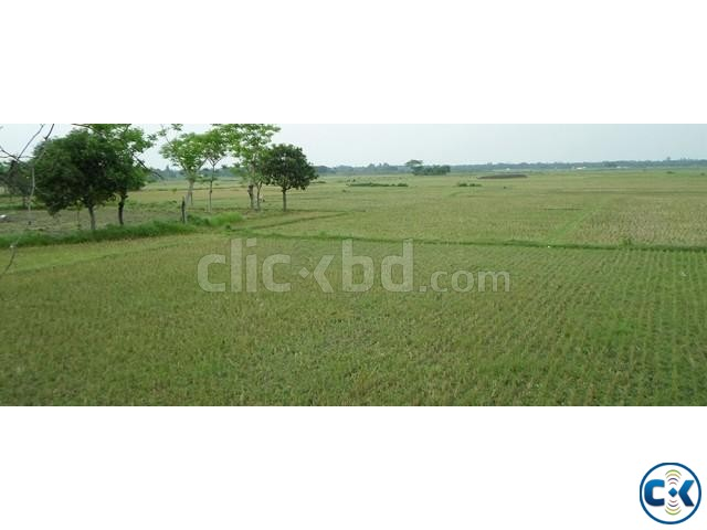 Land For Sell - Khulna  | ClickBD large image 1