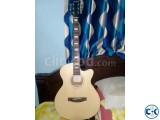 AXE Acoustic Guitar with Equalizer