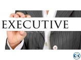 Sales Marketing Executive