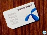GP Sim Card 01717