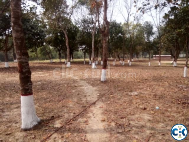 3 Katha Southfacing plot in Purbachal | ClickBD large image 0