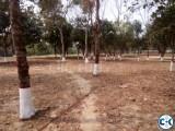 Park Facing Plot in Purbachal