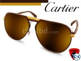 CARTIER Blast Aviator Sunglass