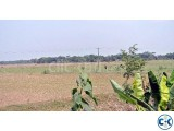 land for sale near Hemayetpur Bus Stand