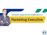 Marketing Executive need for Software Firm