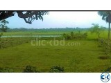 5.9 katha land for sale at Lalbagh Munda Uttarkhan