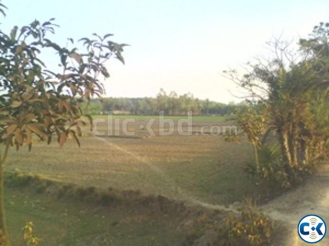 Mouja Gazipur Land for Sale beside Virgo Pharmaceuticals  | ClickBD large image 0