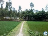 Lands and Pond Sale in Ulipur
