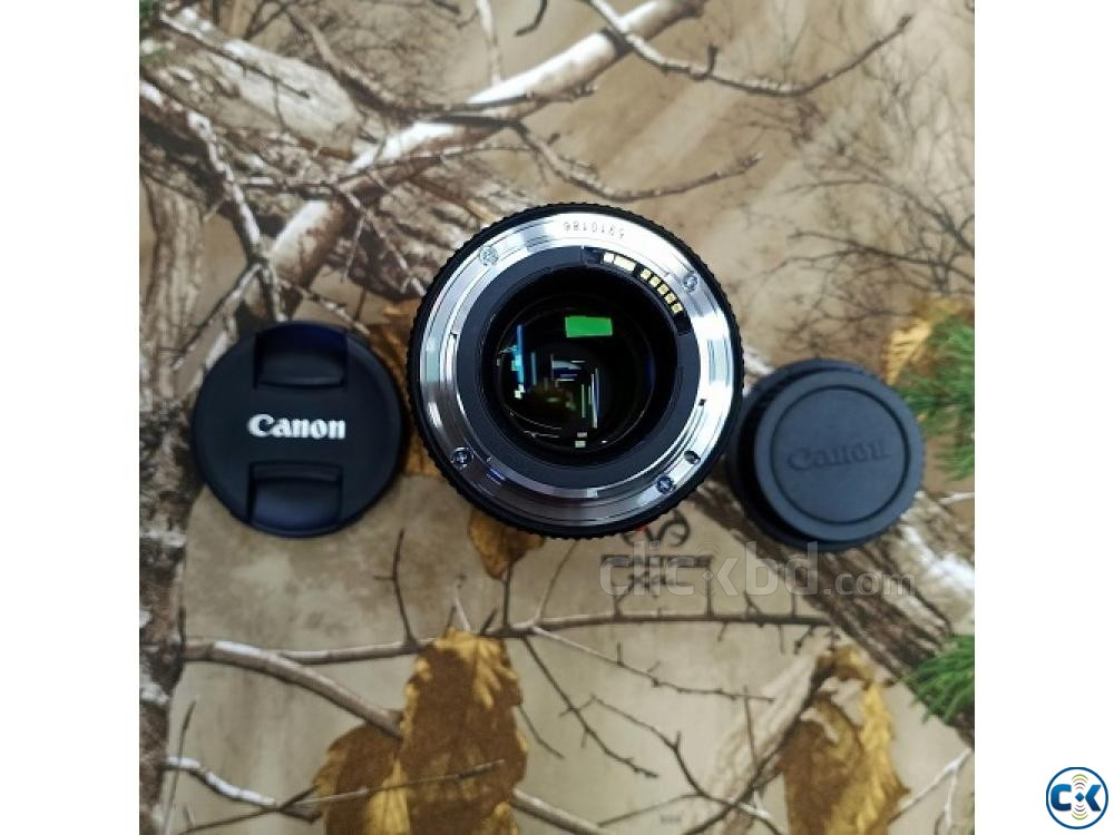 Canon EF 100mm f 2.8L Macro IS USM Professional Prime Lens | ClickBD large image 3