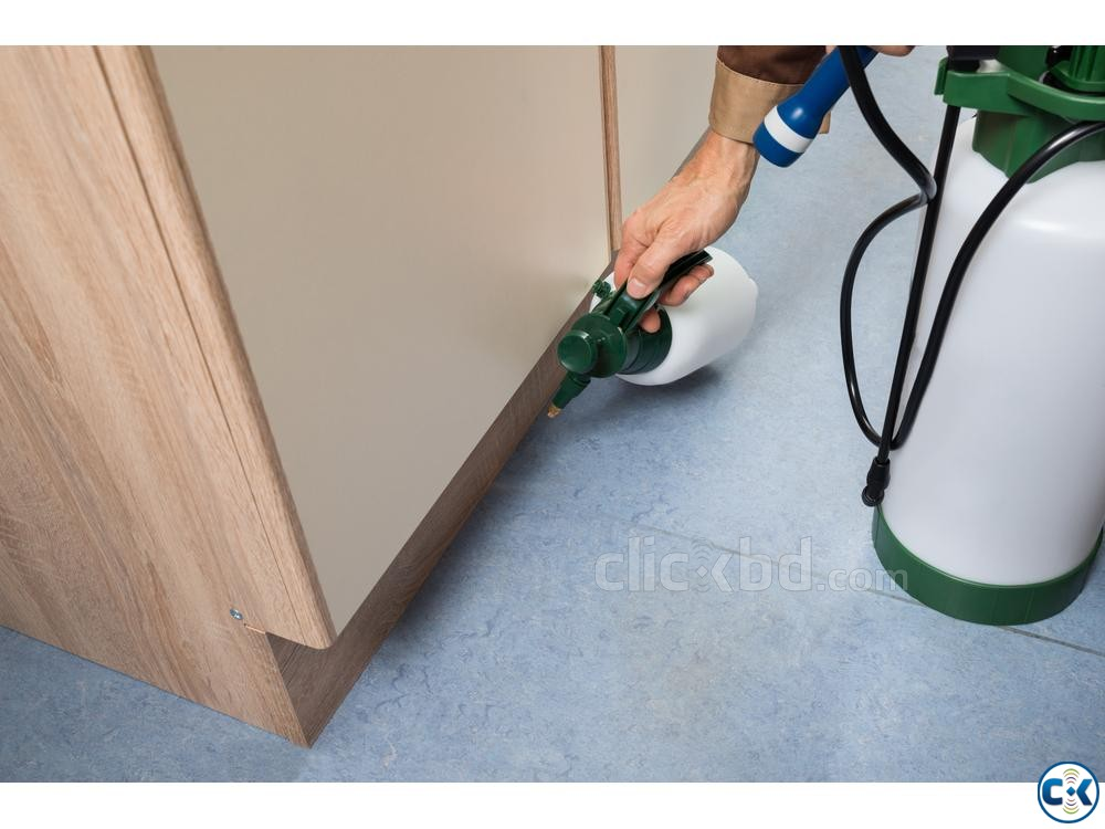 Pest Control Service Dhaka | ClickBD large image 0