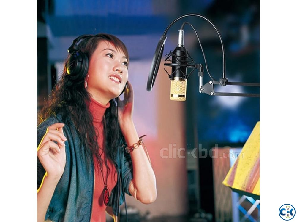 Studio Package Condenser Microphone In Bangladesh | ClickBD large image 2