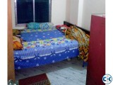 One Room Rent Shewrapara