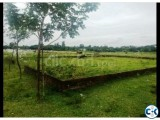 5 katha ready land in hemayadpur Dhaka