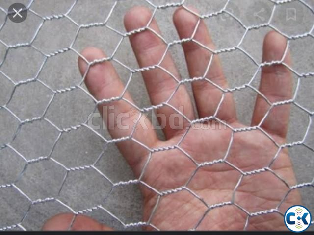 Hexagonal wire mesh | ClickBD large image 1