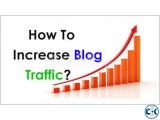 Buy Website traffic 0.5 for 1000 worldwide traffic