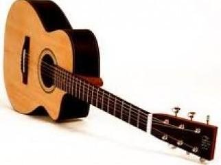 anisha accoustic guitar | ClickBD large image 0