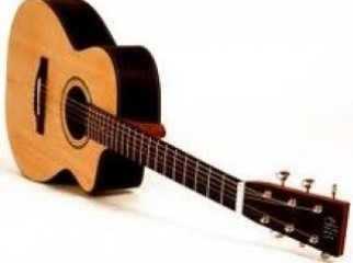 anisha accoustic guitar