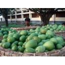 Original Mango from Rajshahi Chapainawabganj | ClickBD large image 0
