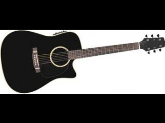 Custom Acoustic Guitar With Equalizer