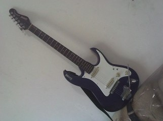 semi floyed rose trimular givson electric guiter