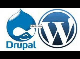 Professional Training on Drupal and WordPress-TT