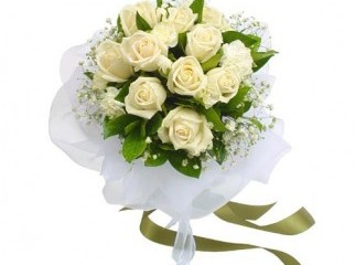 White Color Roses