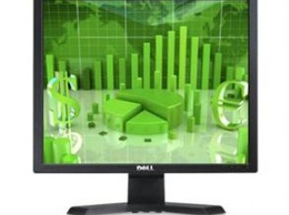 DELL e170s SQUARE LCD MONITOR