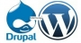 Professional Training on Drupal and WordPress-TT | ClickBD large image 0