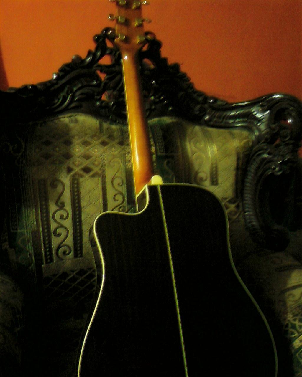 SX CUSTOM GUITAR WITH AN EQUALIZER. | ClickBD large image 1