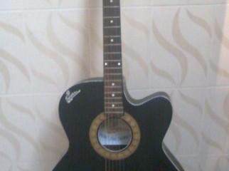 Signature Acoustic Guitar (loud series)
