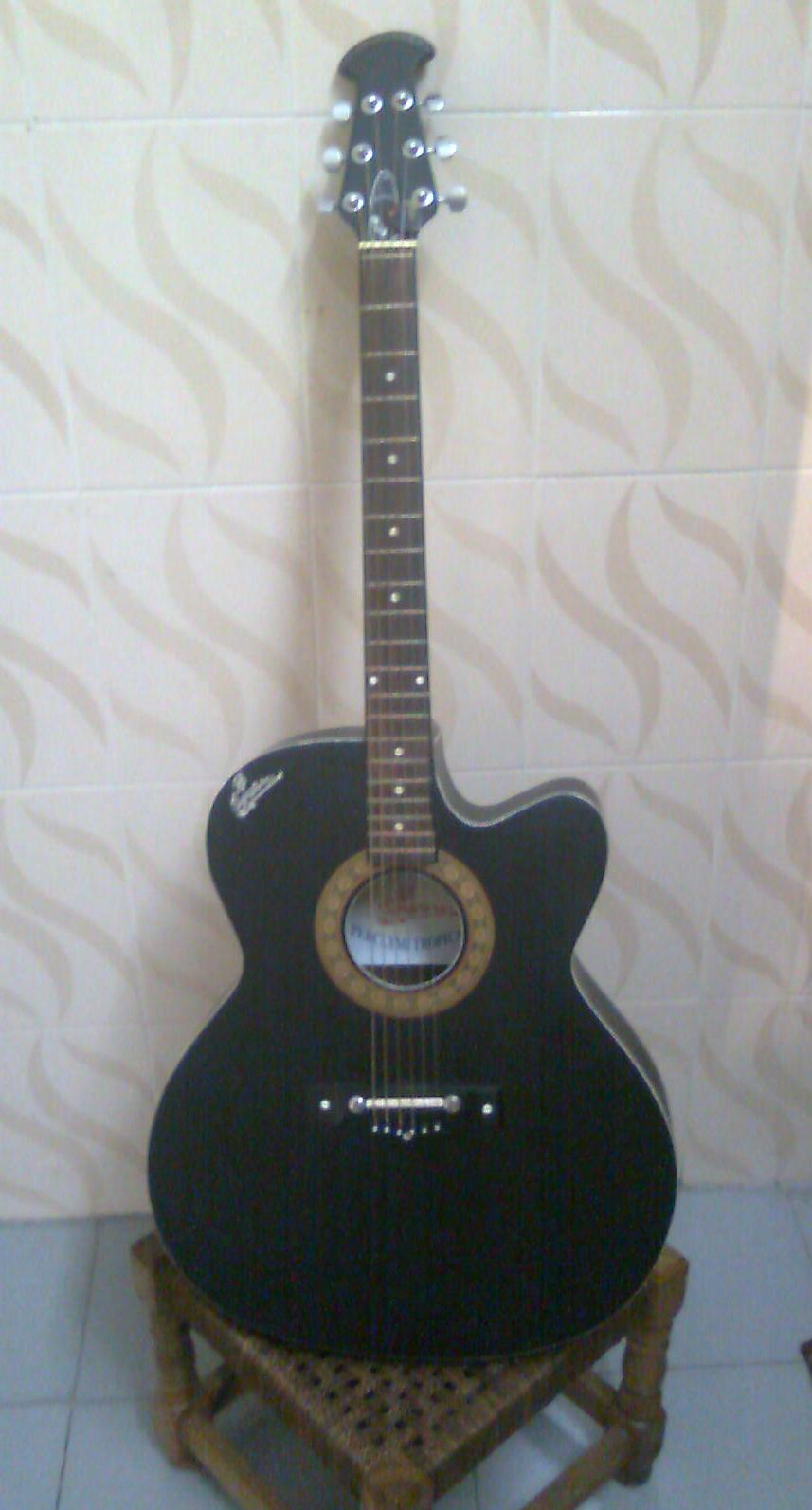 signature acoustic guitar loud series clickbd. Black Bedroom Furniture Sets. Home Design Ideas