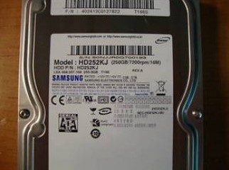 New Samsung 250GB SATA Hard Disk- 1yrs Warranty