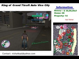 King of GTA Vice City