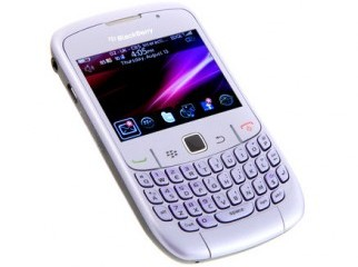 100 fresh blackberry sell low price at click bd urgent