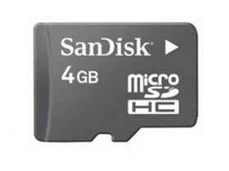 Sandisk Micro SD Memory card.