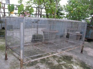 Cage khacha for Sale