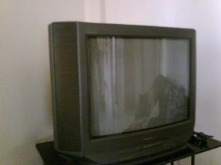 Sony Trinitron 21'' Color TV