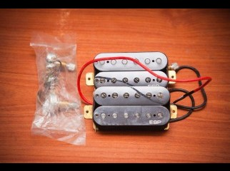 ESP LH-150 Bridge and neck pickups