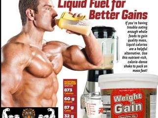 nutrisport weight gainer from www.bdsupplement.com