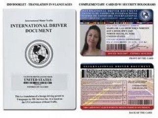 Need International Driving License