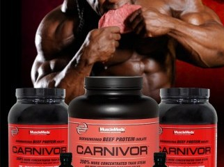 www.bdsupplement.com carnivor mass