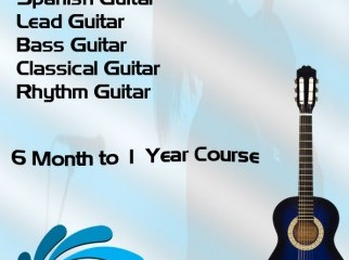 Learn Guitar from professionals