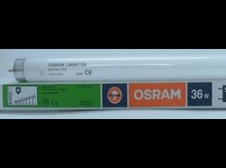 OSRAM Tube Light in Bangladesh