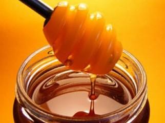 100 Pure Honey From Sundarban for Sale 100ml 250ml 500ml