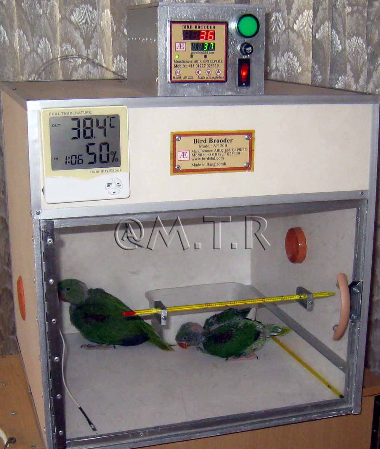 Digital Bird Brooder Model AE 20B | ClickBD large image 0